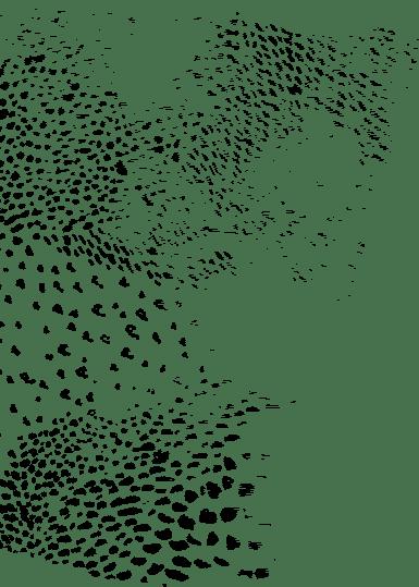Pattern panthère velds