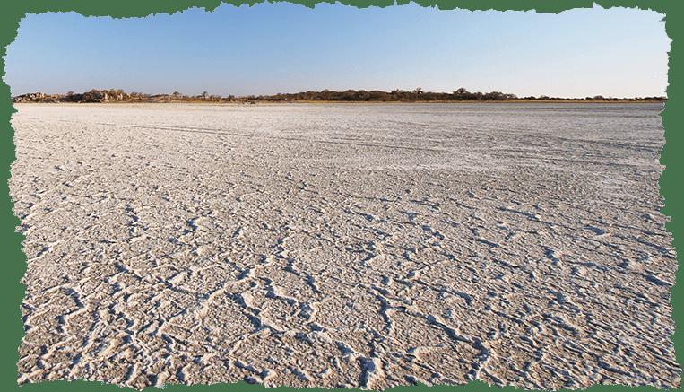 paysage sels du kalahari