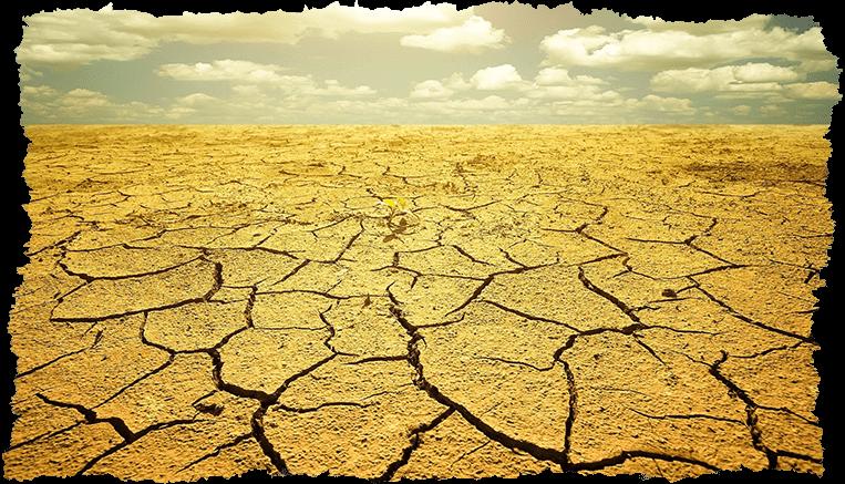 Terre sècheresse concept rides visage