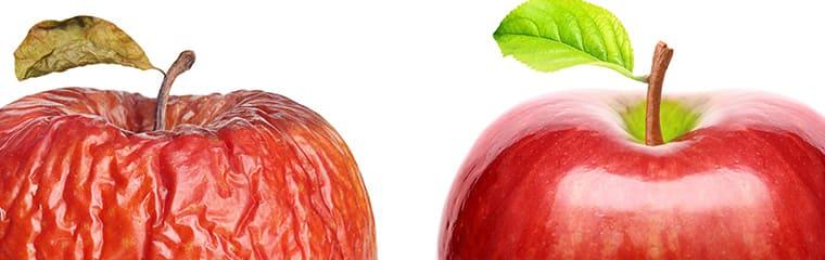 concept peau desséchée pommes