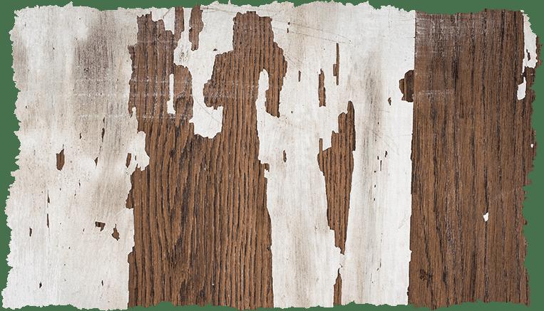Concept peau qui pêle texture bois