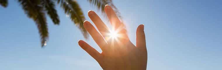 main soleil palmier