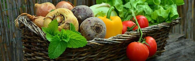 légumes panier manger sain